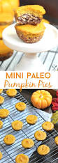 Pumpkin Pie Without Crust Healthy by Mini Paleo Pumpkin Pies
