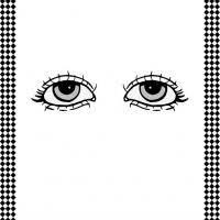 Pair Of Eyes Flash Card