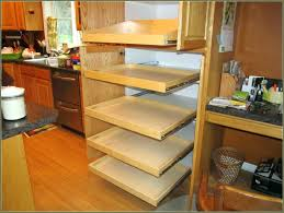 Under Cabinet Trash Can Pull Out by Pull Out Trash Cans Under Cabinet Down Trsh Qurt Dm Ikea