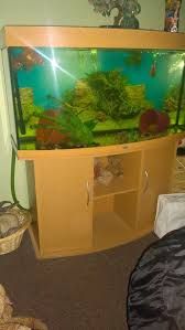 juwel aquarium vision 260 juwel second pet accessories buy and sell in the uk and