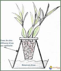 photo diffuseur d ambiance humide pour orchidées