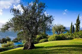 100 Hotel Casa Del Mar Corsica Delmar PortoVecchioFrance12 LTL Travel Collection