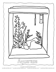 Blank Aquarium Coloring Pages Free Outline Drawing Of