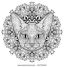 Coloring Book For Adults The Head Of A Mysterious Cat With