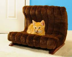 Petco Pet Beds by Christmas Gifts For Pets Furniture Treats And Toys For Your Dog