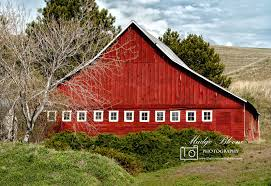 Colfax WA | The View From Right Here Red Barn Washington Landscape Pictures Pinterest Barns Original Boeing Airplane Company Building Museum The The Manufacturing Plant Exterior Of A Red Barn In Palouse Farmland Spring Uniontown Ewan Area Usa Stock Photo Royalty And White Fence State Seattle Flight Interior Hip Roof Rural Pasture Land White Fence On Olympic Pensinula