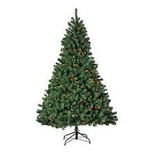 65 Pre Lit VanBuren Spruce Tree With 500 Multi Color Lights