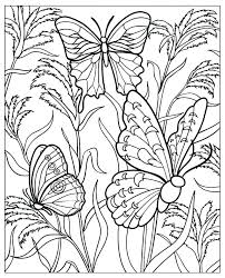 Butterfly Coloring Page Printable Pages Free For Adults