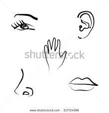 Hand Drawn Illustration Of The Five Senses