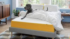 The Best Cheap Eve Mattress Discounts And Deals In October ... Adamevecom Coupon Code Grind 50 Off 25 Off Adam And Eve Toys Codes Top October 2019 Deals Page 1 Customer Reviews Of Marathon Delay Spray Qpons Sextoyqpons Twitter Eve Coupon Code By Hsnuponcodes Issuu Best Love Quotes The Story Love Romance Adams Polishes Mystery Box Virgin Promo Codes Free Xxx Tube Adamevetoys Coupons Promo Groupon Hotwire Verified Discount Genetic Chrosome Study Traces All Men To Man Loves Pdf Ebook