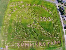Frederick Maryland Pumpkin Patch by Frederick U0027s Corn Mazes Bring All Ages Fun For The Season And A