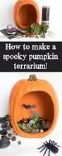 Fake Carvable Pumpkins by Best 25 Spooky Pumpkin Ideas On Pinterest Cookie Monster
