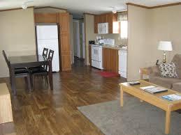 100 Interior For Homes Elizabethcitycabinexteriormobilehomeinterior102607 Cavareno