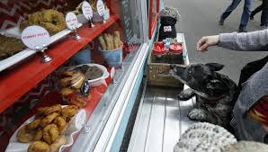 Food Truck For Fido: New Seattle Business Caters To Canines | The ... Seattle Curbside Food Trucks Roaming Hunger Austin High Schools New Truck And More Am Intel Eater The Westin Washington Streetzeria A Food Cart All You Can Eat Youtube Maximus Minimus Wa Stock Photo Picture And Truck For Fido Business Caters To Canines Boston Baked 6 Of The Fanciest From Paris Wine Day In Life A Met Roundups South Lake Union Saturday Market