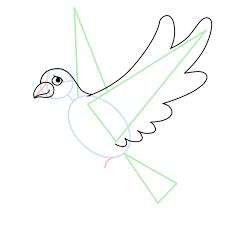 Drawing the wing of the dove
