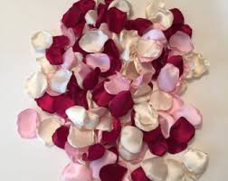 Burgundy Rose Petals Pink Country Wedding Decor Bridal Southern