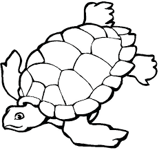 Ocean Coloring Pages For Kids Free Online Printable Pictures Themed