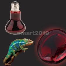 Reptile Heat Lamps Uk by Uk Plug Pet Reptile Basking Heat Lamp Socket Breeding Heat Lamp