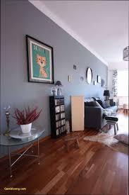wohnzimmer graue wand konzept