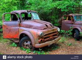 Florida Crawfordville Rusted Antique Trucks Vehicles Stock Photo ... Antique Truck Club Of America Trucks Classic Florida Crawfordville Rusted Antique Trucks Vehicles Stock Photo American Pickup History Abandoned In 2016 Old Old Pictures Semi Galleries Free Download Tional Meet Classiccarscom Journal Muscle Car Ranch Like No Other Place On Earth Jims Photos Jims59com 9 Most Expensive Vintage Chevy Sold At Barretjackson Auctions Big Rigs From The Golden Years Of Trucking
