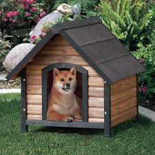 Arlene Outback Extreme Country Lodge Dog House