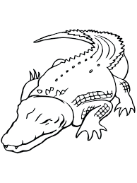 100 Coloring Pages Of Sharks