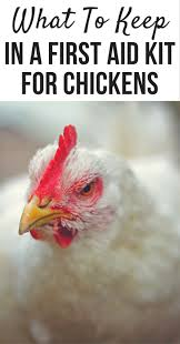 1064 Best Chickens Images On Pinterest | Raising Chickens ... Cheap Raising Ducks For Eggs Find Deals On The Chicken Chick 11 Tips For Predatorproofing Chickens 1064 Best Images Pinterest Chickens In The South Southern Living Keeping Ultimate Beginners Guide Australian Inrested Your Backyard Home Life How To Chickenproof Garden Modern Farmer Coop Yard Design 7 Coops 6760 Homestead Critters Landscape Gardening With 343 Other Farm Eggs
