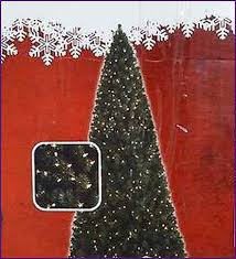 Polytree Christmas Trees Instructions by Collection Pre Lit Christmas Tree Instructions Pictures