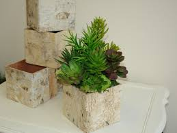Rustic Natural Birch Bark Wood Vases Basket Flower Pot Home Decor Chic Wedding Succulents Centerpieces