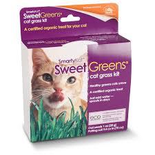 Amazoncom Smartykat Sweet Greens Cat Grass Kit 1 Oz Pet Supplies