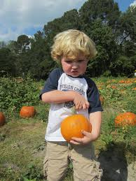 Mikes Pumpkin Patch Jacksonville Nc by Rogue Vintage Fall Fun At Mike U0027s Farm