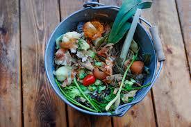 komposteimer tipps zur verwendung in der küche
