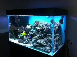 aquarium eau de mer pas cher de design unique