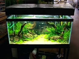 Aquascaping Rocks Online India Tag: What Is Aquascaping. Rocks For ... Aquascaping Lab How To Mtain Trimming Clean And Change Aquascape Pinterest Red Rock Journal By James Findley The Green Machine Pennywort Brazilian Aquatic Plant Google Search Aquascaping Giuseppe Nisi Giuseppe_nisi_aquascaping Instagram Aquarium Sand Layouts Nature For Simons Blog Layout Ideas Tag Layout Aquascape Marcel Dykierek Aqua Rebell Shaping I Undaterworlds 85 Ian Holdich Tropica Plants