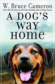 Amazon A Dog s Way Home A Novel W Bruce