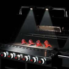 Gas Light Mantles Canada by Weber Summit S 660 Built In Natural Gas Grill With Rotisserie