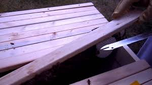 Top Bar Hive Inspection #2 Video 1 Of 2 - YouTube Bkeeping For Beginners Pt1 Video On How To Build A Top Bar Hive Feeder Set Up Behind Follower Board In Bkeeper Top Bar Hive Melissas Honey Bees Epic Beehive Swarm Trap Youtube How Transfer Brood Comb From Langstroth Frames New 200 Hives The Lowcost Sustainable Way A Bee Keeping Make Favorite Sewisabel Backyardhive And Bkeeeping Supplies Sale To Install Package Beverly Getting Started Your First Year As Beehive By Eco Box Eco Bee Box Modern