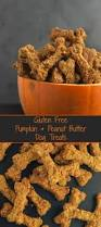 Dog Constipation Treatment Pumpkin by Delicious Homemade Dog Treats Which Are Perfect For Any Pooch