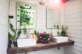 pflanzen im badezimmer eine grüne wohlfühloase