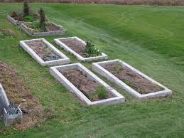 Garden greenhouse and raised beds