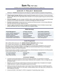 Project Manager Resume Samples Entry Level Junior Business Analysis Areas