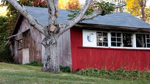Apple Shed Newark Ny by Sofia Payson Author At Cider Culture
