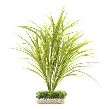 plante artificielle pour aquarium plante artificielle pour aquarium plastique fond de décor labeo