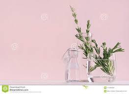 100 Fresh Home Decor Elegance Fragrant Bouquet Rosemary In Glass Vase