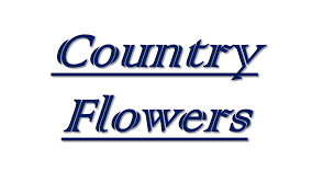 Middleburg Christmas Tree Farm by About Country Flowers Middleburg Pa Florist