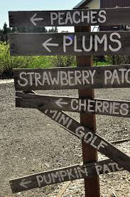 Greenbluff Pumpkin Patch Spokane Wa Hours by Craft Beverages Abound In Bucolic Green Bluff Edible Seattle