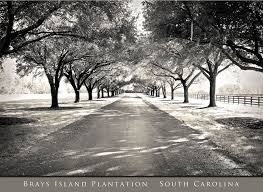 100 Brays Island Brays Island Plantationmy Most Favorite Place In The