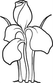 Printable Iris Coloring Page For Kids Flower