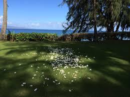 100 The Beach House Maui Venues We Love The RitzCarlton