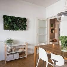 moosbilder und pflanzenbilder ohne pflege stylegreen ch